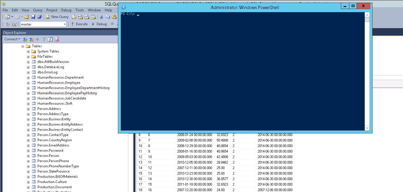 SQL Scripts with Powershell